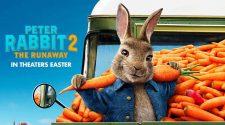 Peter Rabbit 2 The Runway